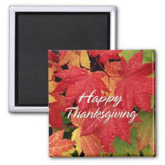 Happy Thanksgiving 8 Magnet