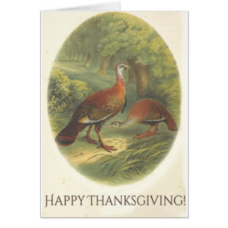 Happy Thanksgiving! :) Card