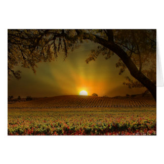Happy Thanksgiving Wine Vineyard Card