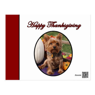 Happy Thanksgiving Yorkshire Terrier Dog Postcard