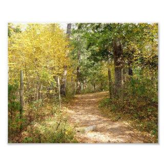 Happy Trails 10x8 Photographic Print