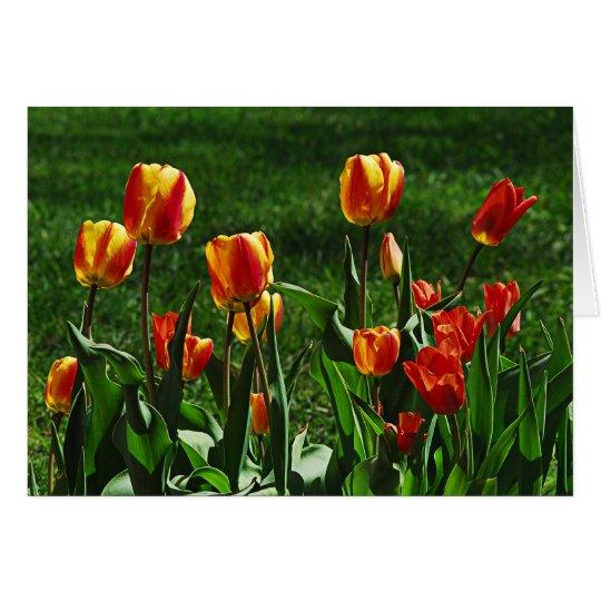 Happy Tulips Card
