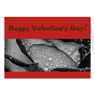 Happy Valentine's Day Card Rose Photo Abstract Art