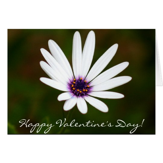 Happy Valentine's Day Daisy greeting card