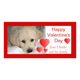 Happy Valentine's Day Dog Photo Cards