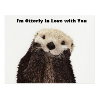 Happy Valentines Day Funny Otter Postcard