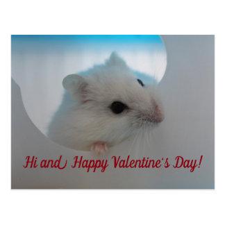 Happy Valentine's Day Hamster Postcard