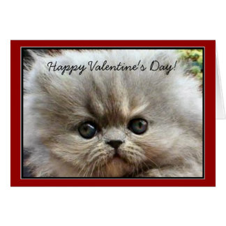 Happy Valentine's Day Persian Kitten greeting card