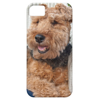 happy Welsh Terrier iPhone 5 Case