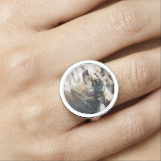 Happy Wolf Portrait, Animal Photography Rings