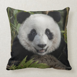 Happy young panda, China Throw Pillow