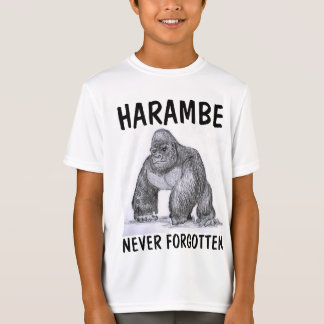 HARAMBE GORILLA Kids T-shirts