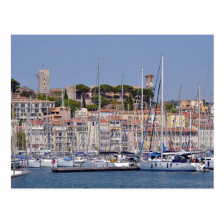 Harbor of Cannes in France Postcard
