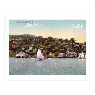 Harbor Sailboats, Sausalito, California Vintage Postcard