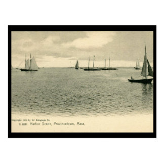 Harbor Scene, Provincetown, MA 1905 Vintag Postcard