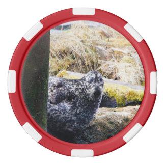 Harbor Seal Poker Chip Set Of Poker Chips