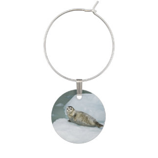 Harbor Seal Wine Charm