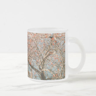 Harbor Tree 10 Oz Frosted Glass Coffee Mug