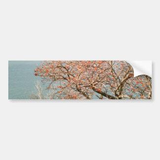 Harbor Tree Bumper Sticker