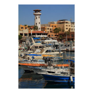 Harbor waterfront in Cabo San Lucas Poster