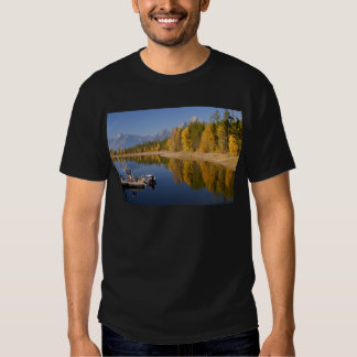 Harbour-Colter Bay T-shirts