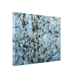 Hard Frost & Tree Nature Abstract Photographic Art Canvas Print