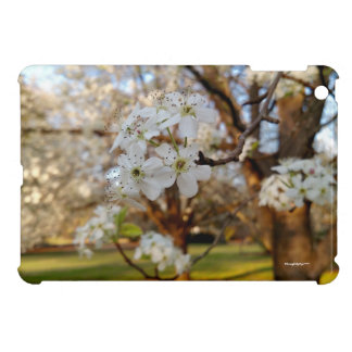 Hard Shell iPad Mini Case Spring Flowers Tree Sun