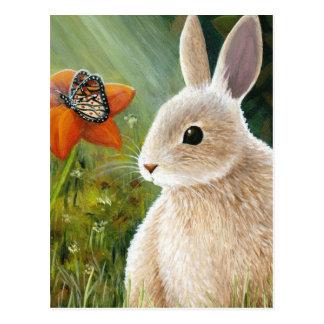 hare 55 postcard