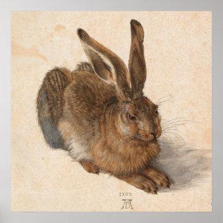 Hare | Albrecht Dürer Poster
