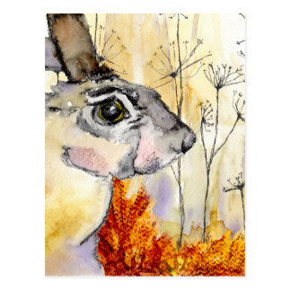 Hare art card (a426)