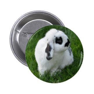 Hare - button