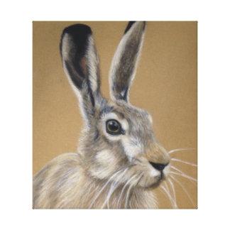 Hare Canvas