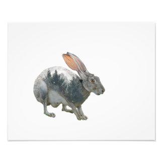 Hare Double Exposure Photo Print