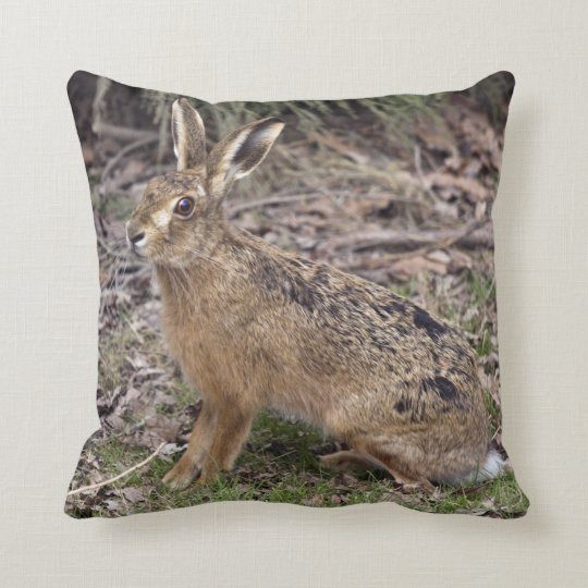 Hare Today, Gone Tomorrow Pillow