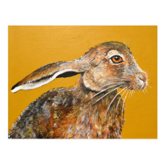 Hare today, gone tomorrow postcard