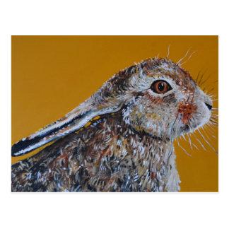 Hare we go again. postcard