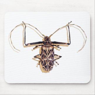 """""""Harlequin beetle"""" Insect Watercolor Bug Mouse Pad"""