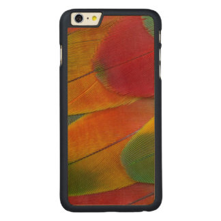 Harlequin Macaw parrot feathers Carved® Maple iPhone 6 Plus Case