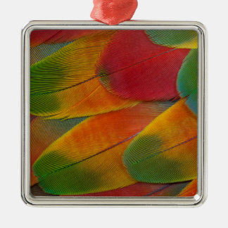 Harlequin Macaw parrot feathers Metal Ornament