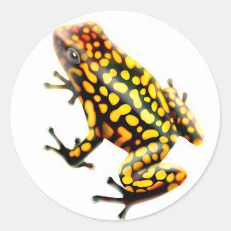 Harlequin Poison Frog Classic Round Sticker