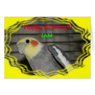 Harley Cockatiel Birthday Card