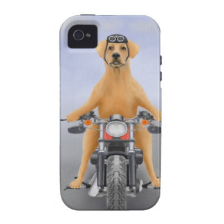 Harley riding Labrador Case-Mate iPhone 4 Cases