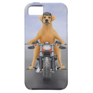 Harley riding Labrador iPhone 5 Cover