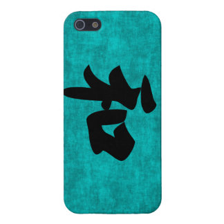 Harmony in Blue Chinese Character Painting iPhone 5/5S Case