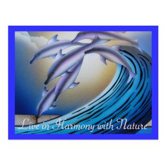 Harmony postcard