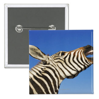 Harnas Wildlife Sanctuary, Namibia, Southern 2 Inch Square Button