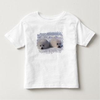 Harp seal (Phoca groenlandica) Harp seal pups Toddler T-shirt