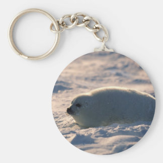 Harp Seal Pup in Snow Keychain