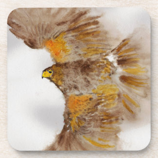 Harris Hawk, Bird of Prey Coaster