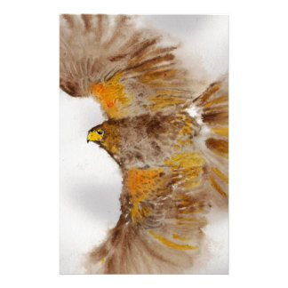 Harris Hawk, Bird of Prey Stationery